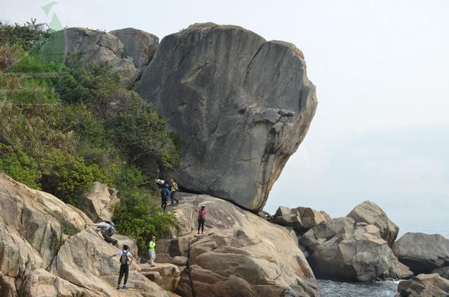 大交椅洲镇海石侧面似大象